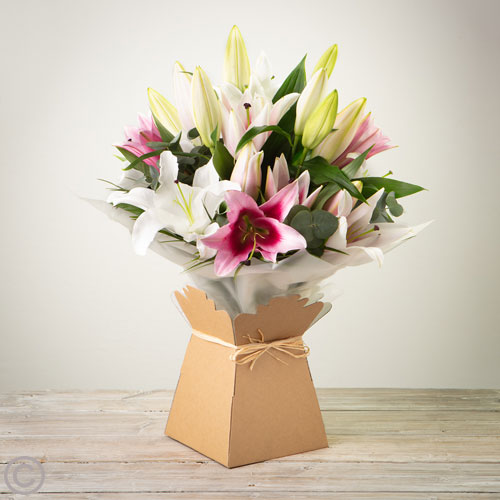 Oriental Lily Hand-tied - Pink and White