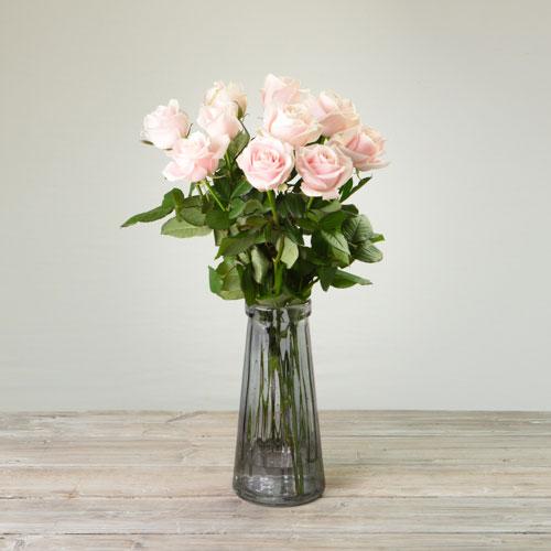 Premium Pink Roses