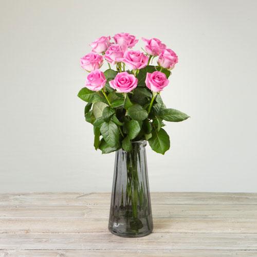 Premium Aqua Roses