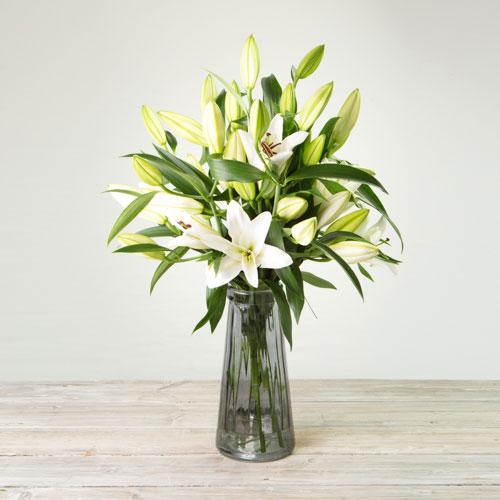 White Oriental Lillies